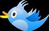 bird-309937_640